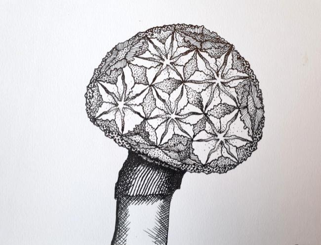 Oene van Geel - Mushroom