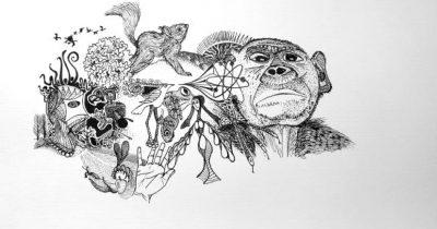 Oene van Geel - Our Planet